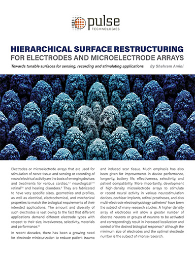 HIERARCHICAL SURFACE RESTRUCTURING FOR ELECTRODES AND MICROELECTRODE ARRAYS